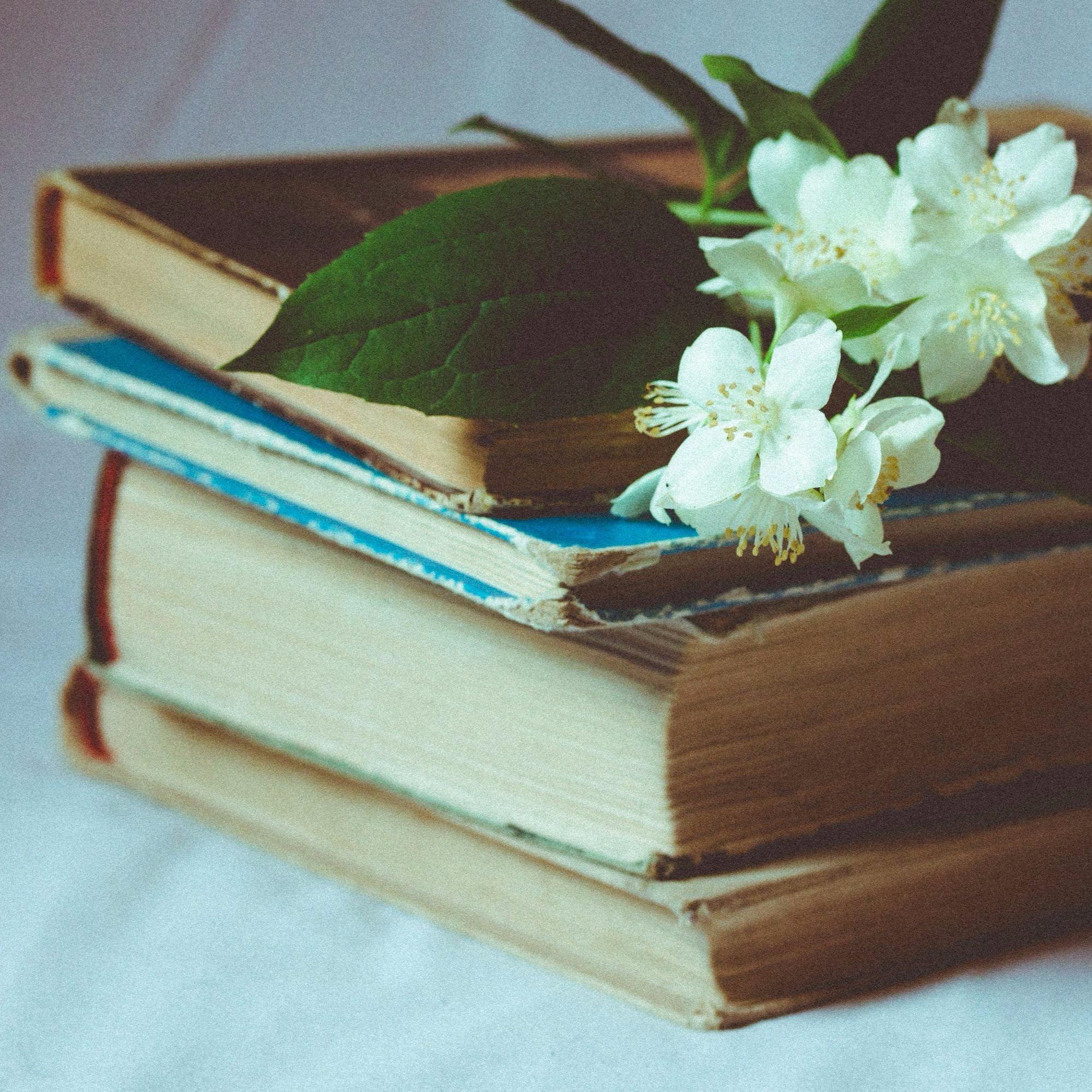 La importancia de leer para ser un buen copywriter profesional
